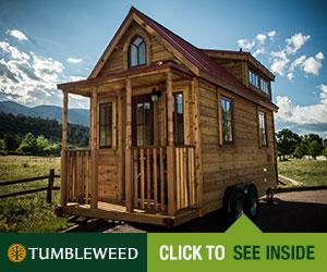Tumbleweed Elm pic