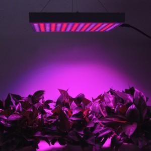 Erligpowht 45W Panel Grow Light