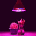 Which Grow Light is Best?: Bulb or Panel LEDs